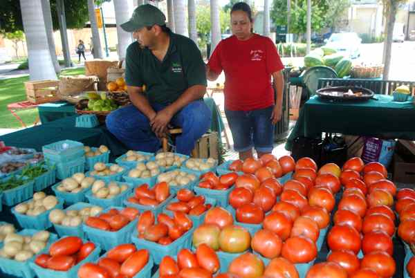 Jerry Sanchez of Homestead offered a huge variety of produce — tomatoes, cukes, baby eggplant and more.