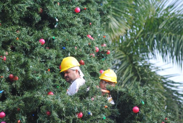 A crew from Meisner Electric put the final touches on the outside of Delray Beach's 100-foot holiday tree.